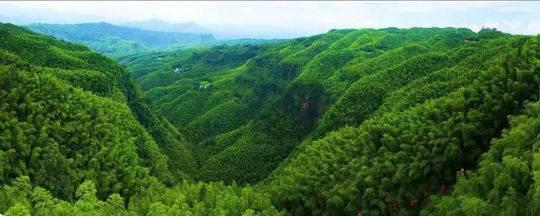 蜀南竹海景区