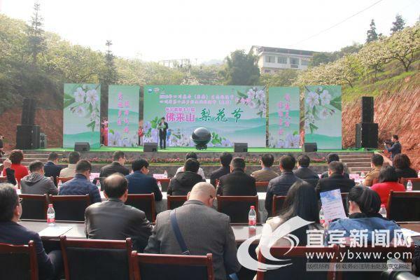 3月20日,长宁县第十八届佛来山梨花节开幕。(宜宾新闻网 方勇 摄)