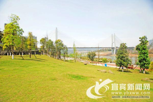 人民群众在休闲运动的同时,可享受亲水的乐趣和长江沿线的美丽风光。(宜宾新闻网 陈忆 摄)
