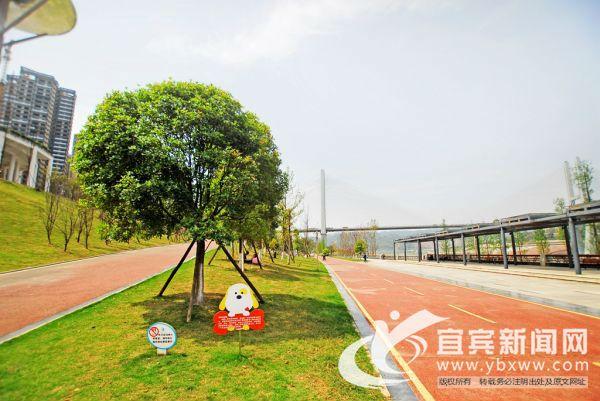 公园内建成的绿道、城市广场和运动休闲设施受到了市民的广泛认可。(宜宾新闻网 陈忆 摄)