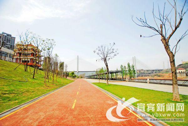 长江公园实施高标准管理,亲水线只能人行,临水线可骑行,绿道机动车和骑行分离,实现安全有序。(宜宾新闻网 陈忆 摄)